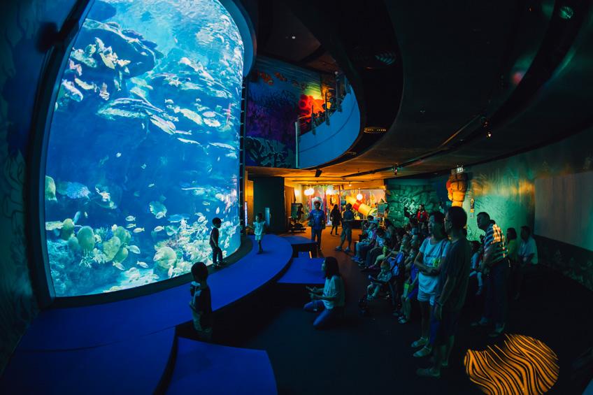 Siam Ocean World เที่ยวปีใหม่ กรุงเทพ