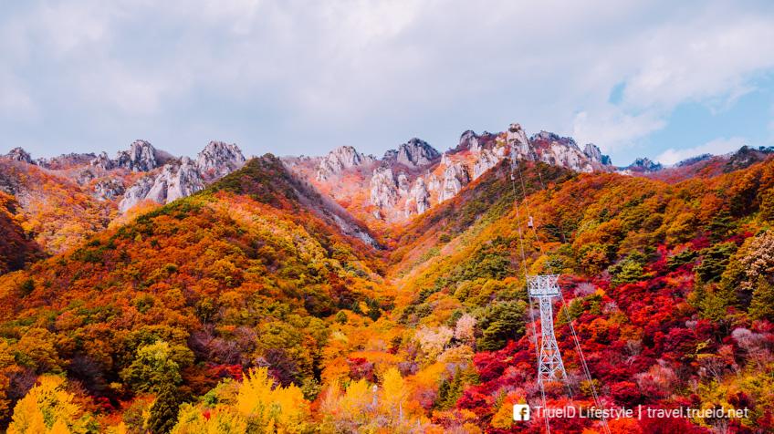 อุทยานแห่งชาติแดดุนซาน เกาหลี