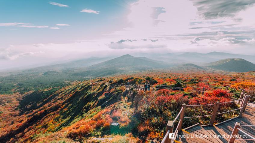 อุทยานแห่งชาติฮัลลาซาน เกาหลี