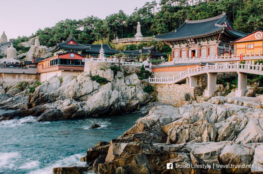 วัดแฮดง ยงกุงซา เที่ยวเกาหลี