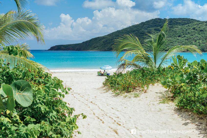 Flamenco Beach ชายหาดที่ดีที่สุดในโลก