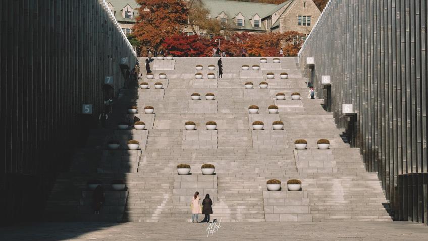 เที่ยวโซล เกาหลี ใบไม้เปลี่ยนสี