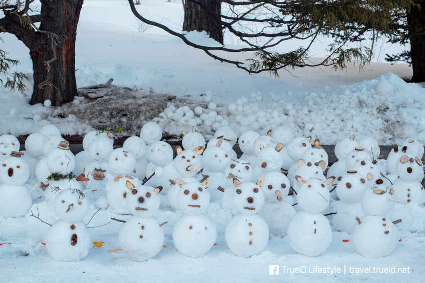 Sapporo Snow Festival ญี่ปุ่น