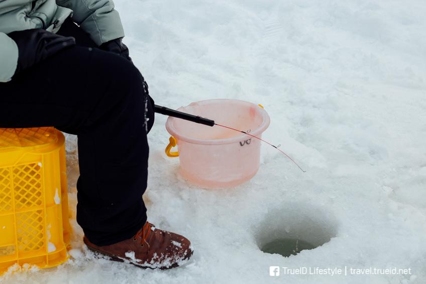 ตกปลา น้ำแข็ง เที่ยวหน้าหนาวญี่ปุ่น