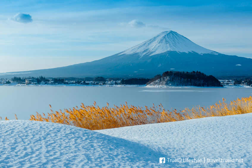 ภูเขาไฟฟูจิ หน้าหนาว