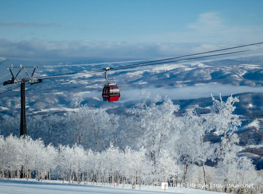 เล่นสกี เที่ยวญี่ปุ่นหน้าหนาว