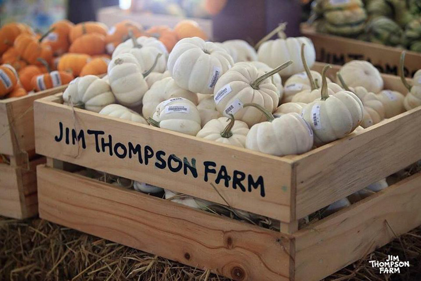 Jim Thompson Farm 2561