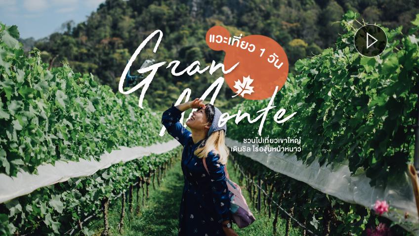 ไร่องุ่นกราน-มอนเต้ GranMonte 1 วัน เที่ยวเขาใหญ่