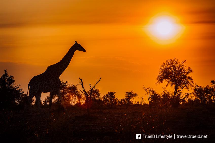 ซิมบับเว ประเทศน่าเที่ยวที่สุดในโลก ปี 2019