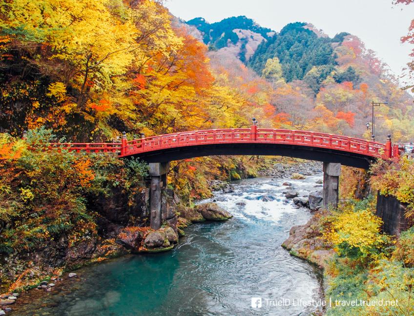 Nikko ที่เที่ยวรอบๆ โตเกียว