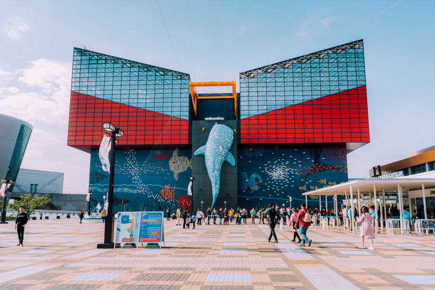 พิพิธภัณฑ์สัตว์น้ำไคยูคัง ที่เที่ยวโอซาก้า