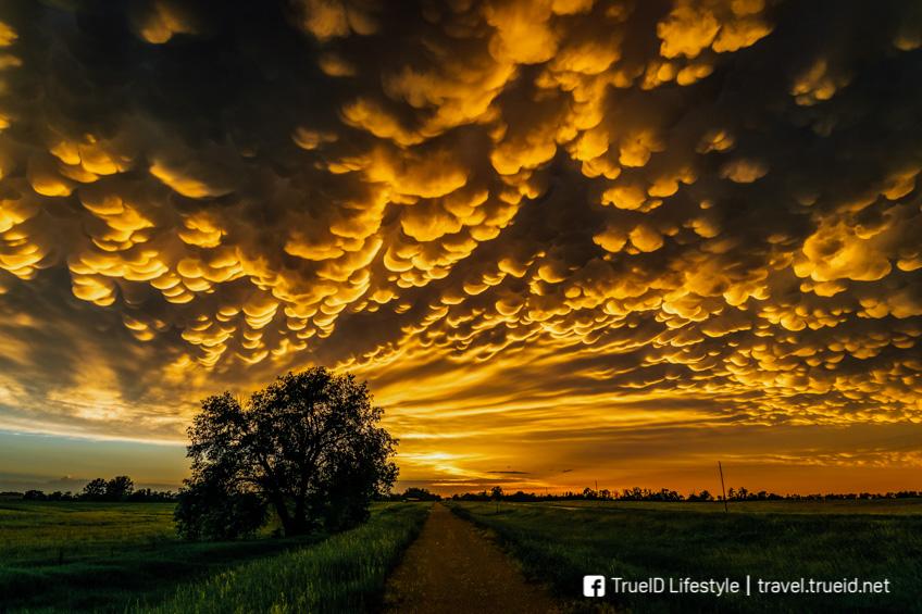 ปรากฏการณ์แปลก Mammatus Clouds