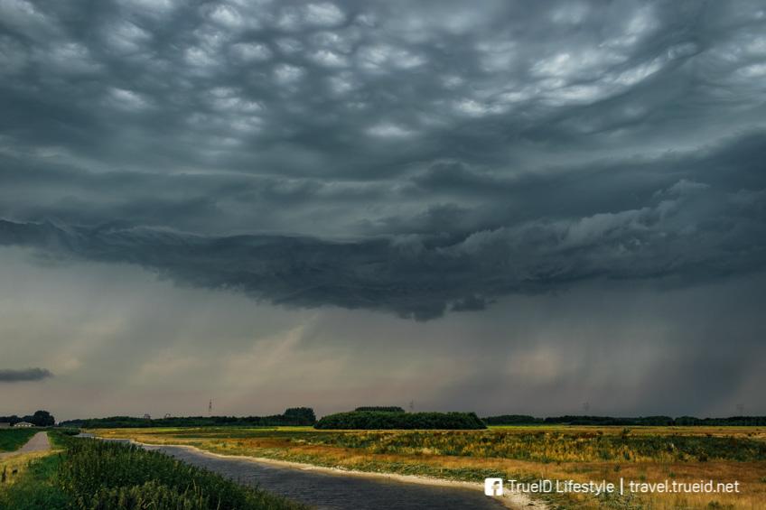 ปรากฏการณ์แปลก Asperatus Clouds