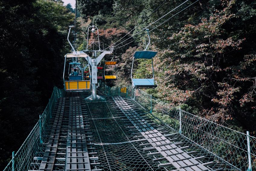 Mount Takao ซากุระ โตเกียว