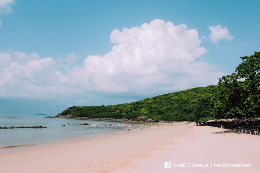 หาดนวล ที่เที่ยวเกาะล้าน พัทยา