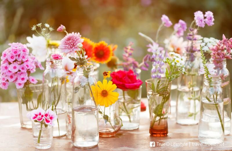 ดอกไม้แห้ง วาเลนไทน์