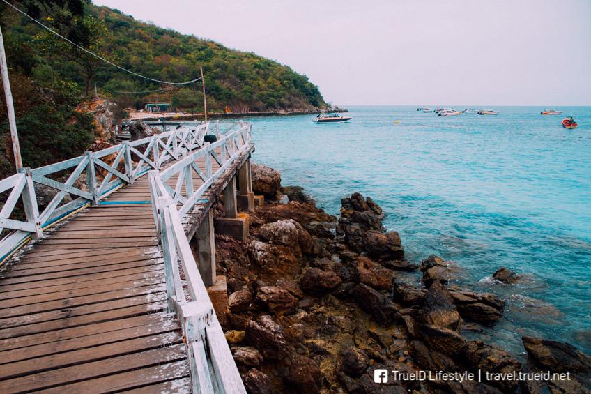 เกาะล้าน ที่เที่ยวใกล้กรุงเทพ