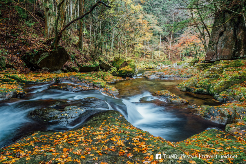 เที่ยวญี่ปุ่น Akame 48 Falls