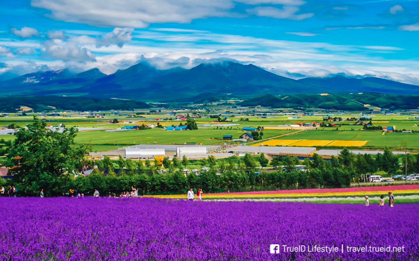 เที่ยวฮอกไกโด ญี่ปุ่น ทุกฤดู