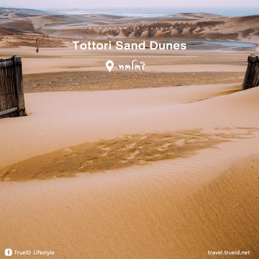 เที่ยวญี่ปุ่น Tottori sand dunes