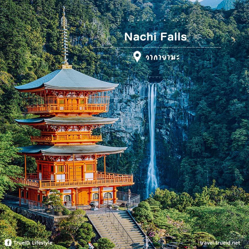 ที่เที่ยวญี่ปุ่น Nachi Falls