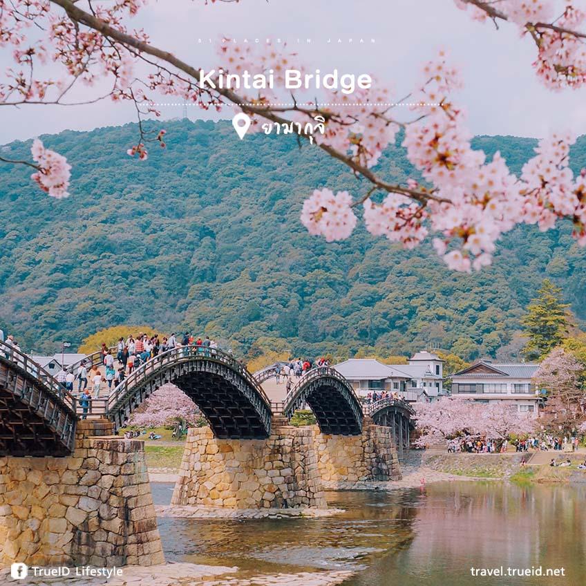 Kintai Bridge ญี่ปุ่น