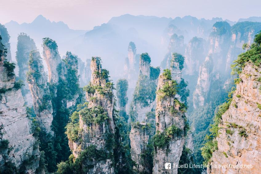 Avatar ฉากถ่ายทำ Zhangjiajie