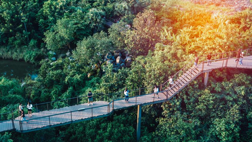 ป่าในกรุง ที่เที่ยวกรุงเทพ วัยรุ่น