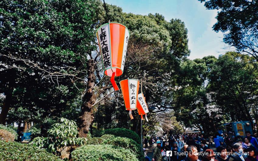 ชมดอกซากุระ สวนอุเอโนะ โตเกียว 2019 อัพเดตล่าสุด