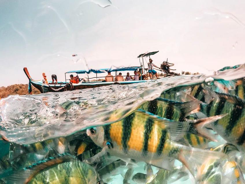 เกาะพีพี ดำน้ำภูเก็ต ถ่ายรูปสวย
