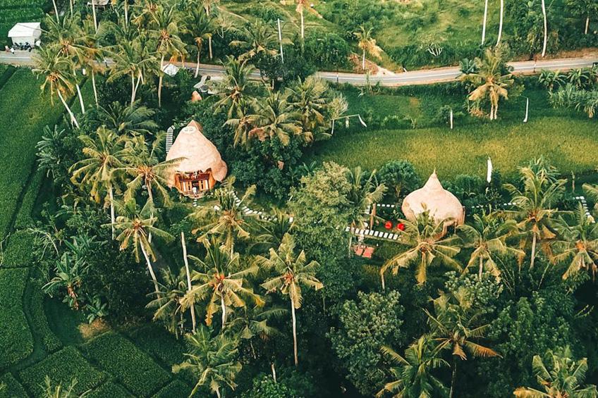 ที่พักสวยบาหลี DD Bamboo Lodge