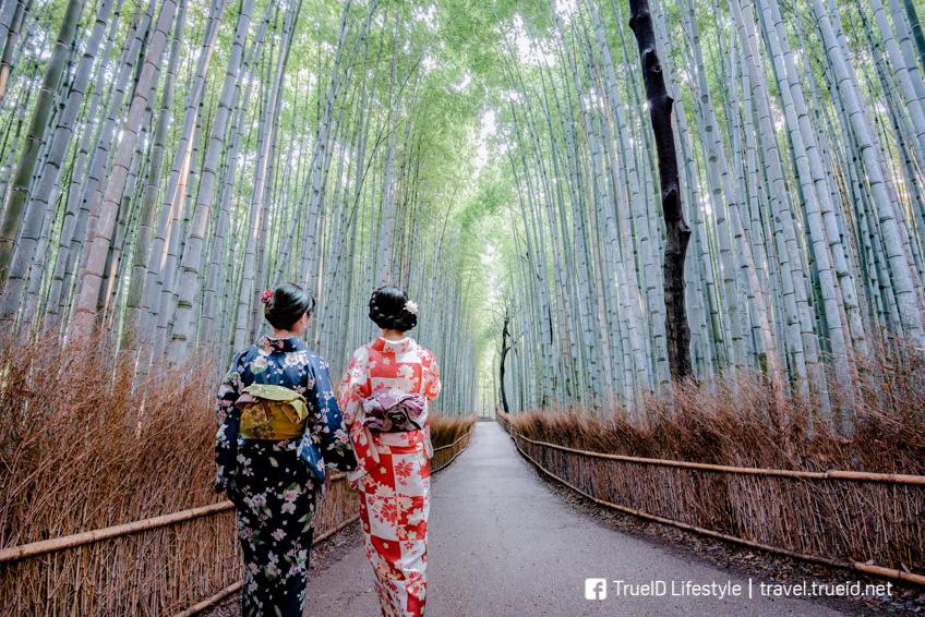 Sagano Bamboo Forest  เที่ยวญี่ปุ่น ฉบับมินิมอล