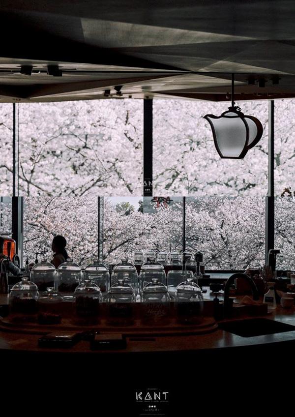 เที่ยวโตเกียว สตาร์บัคส์