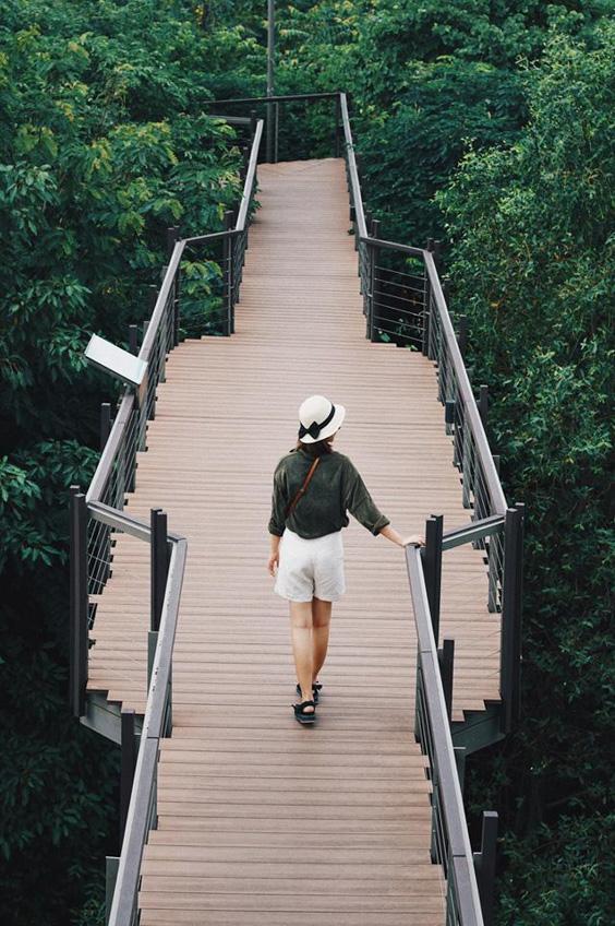 เที่ยวกรุงเทพ ถ่ายรูปสวย ป่าในกรุง