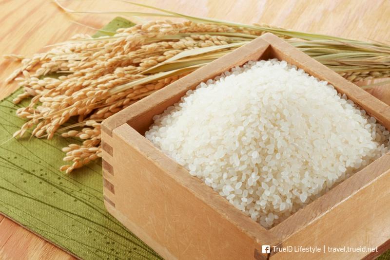 Niigata rice ข้าว ของดีนีงาตะ
