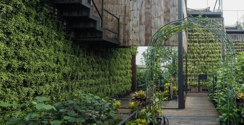 พิมฐา บ้านต้นไม้ Bangkok Three House