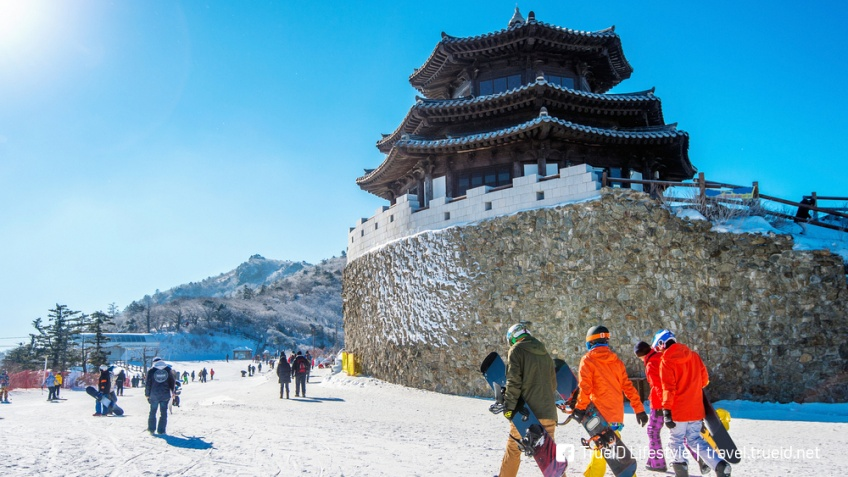 เที่ยวเกาหลีใต้ หน้าหนาว