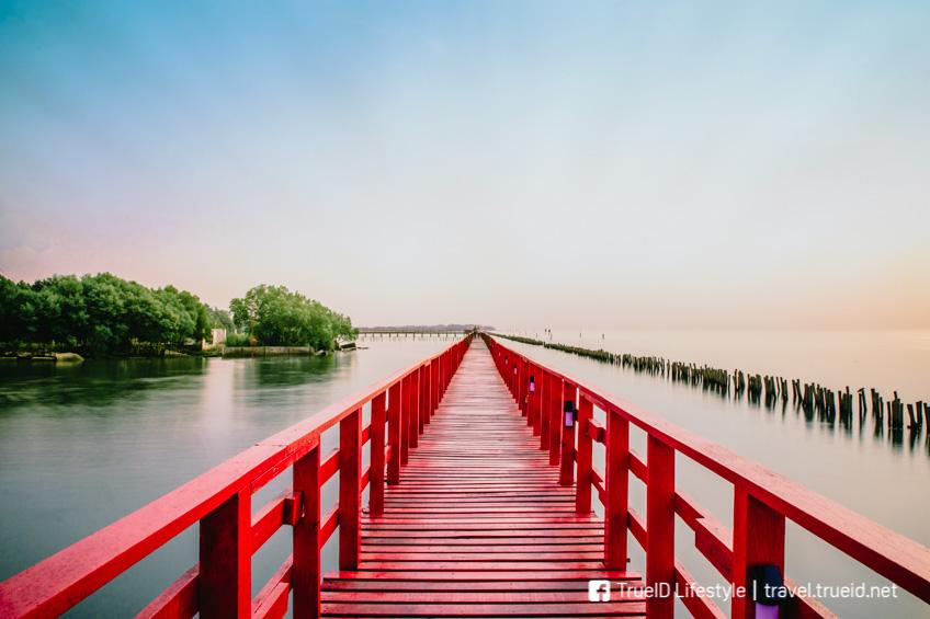 สะพานแดง จุดชมปลาโลมา สมุทรสาคร