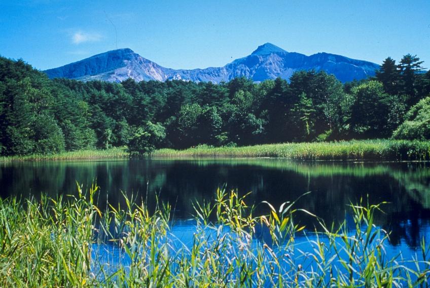 ทะเลสาบ 5 สี โกะชิคินุมะ เที่ยวญี่ปุ่นหน้าร้อน