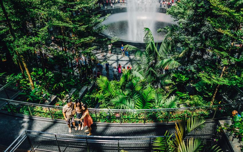 จุดเช็คอิน ฟีลธรรมชาติ สิงคโปร์ ถ่ายรูปสวย
