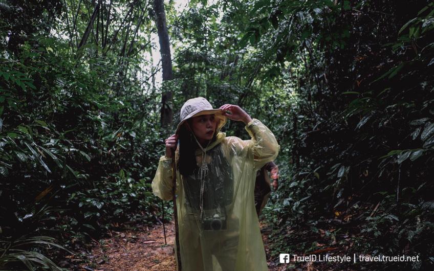 เขื่อนเชี่ยวหลาน นอนแพ 500 ไร่ เที่ยวหน้าฝน สุราษฎร์ธานี