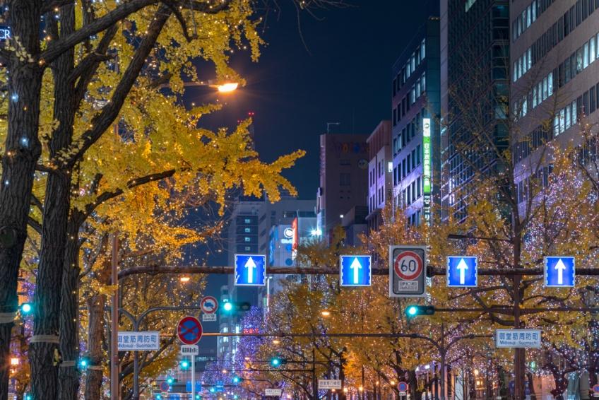 Midosuji Gingko Avenue มิโดสุจิ โอซาก้า