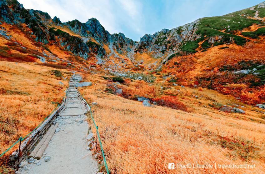 ใบไม้เปลี่ยนสี ญี่ปุ่น Central Alps Senjojiki Cirque นางาโน่