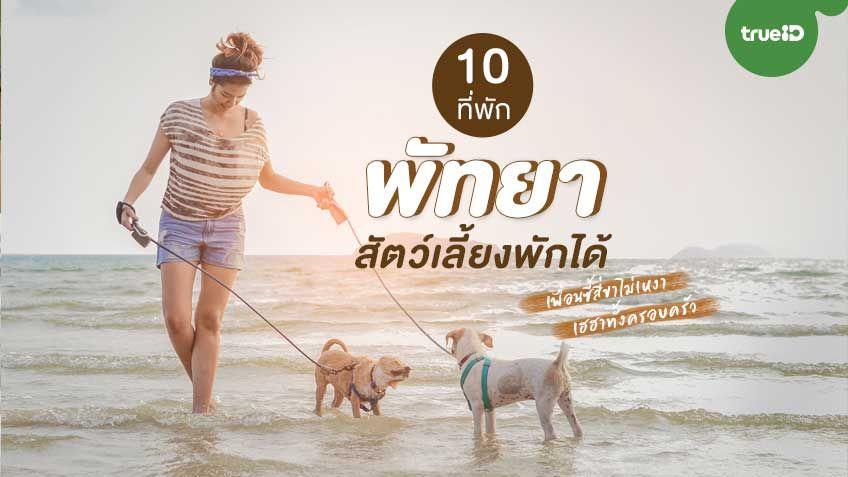 10 ที่พัก พัทยา สัตว์เลี้ยงพักได้ พาน้องไปทะเล สนุกเฮฮาทั้งครอบครัว