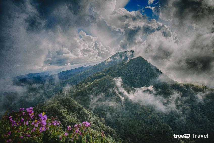 เดินป่า ยอดภูเมี่ยง อุทยานแห่งชาติต้นสักใหญ่ อุตรดิตถ์