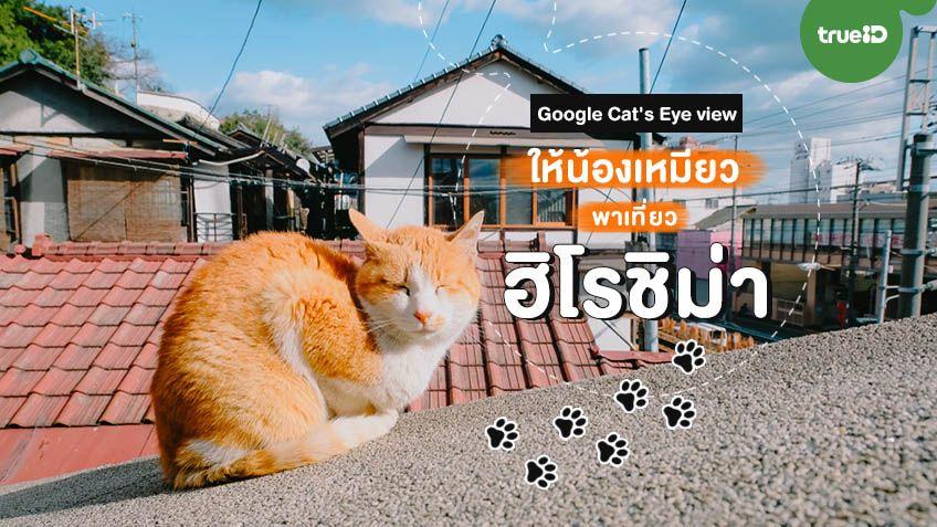แมวเหมียวพาเที่ยวฮิโรชิม่า ด้วยแผนที่ Cat's Eye view เดินลัดเลาะสำรวจซอกซอยแบบเจ้าเหมียว
