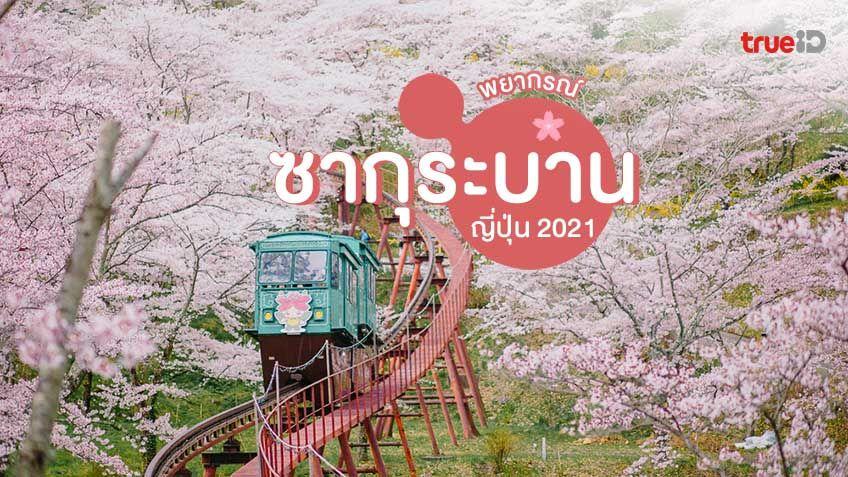 พยากรณ์ซากุระบาน ญี่ปุ่น 2021 ต้อนรับฤดูใบไม้ผลิ