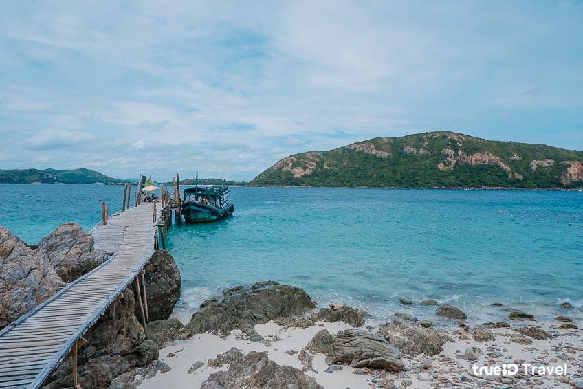 เกาะขาม จุดดำน้ำ ทะเลตะวันออก
