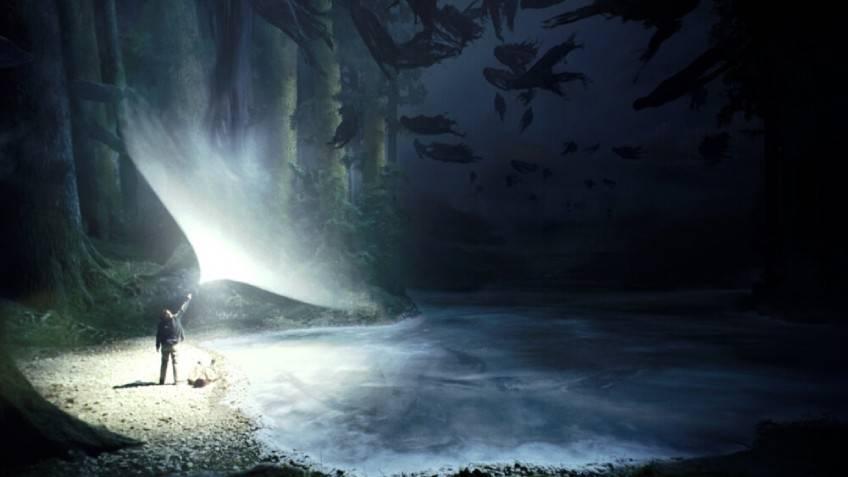ป่าต้องห้าม Forbidden Forest แฮร์รี่ พอตเตอร์ ที่เที่ยวอังกฤษ