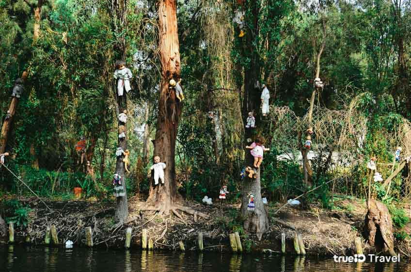 ที่เฮี้ยน เรื่องผี เม็กซิโก Island of the Dead Dolls